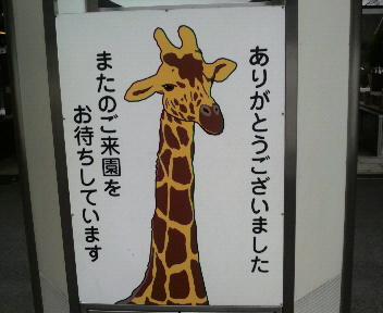 多摩動物公園!!