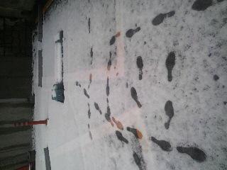 雪(≧∇≦)